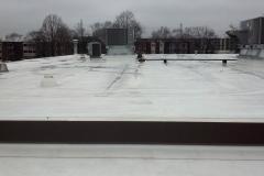 08 TPO Roof_ 5143 Walnut_ Downers Grove 2