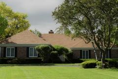 Asphalt Shingle Roof