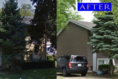 10 Vinyl Siding_ 136 West Melody Lane_ Woodstock before after