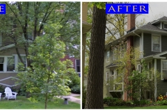 Siding_ 1415 Maple_ Wilmette before after